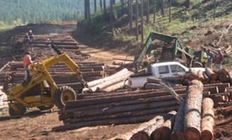 The Fiji Manufacturer's Association Set To Revive