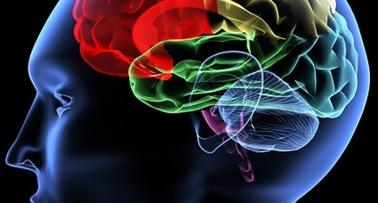 Test Could Reveal Risk of Dementia