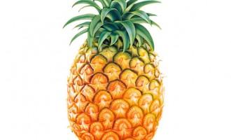 Reasons to Start Eating Pineapple!