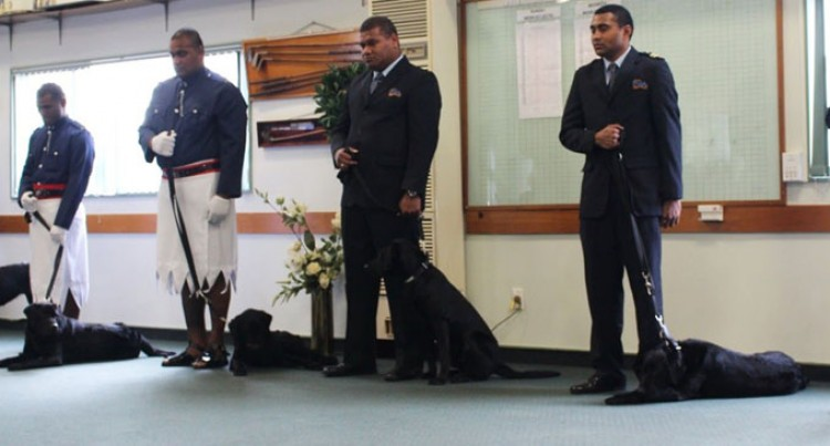 Fijian Detector Dogs Complete NZ Training