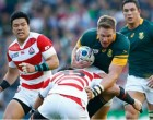 Springboks Can't Explain Defeat