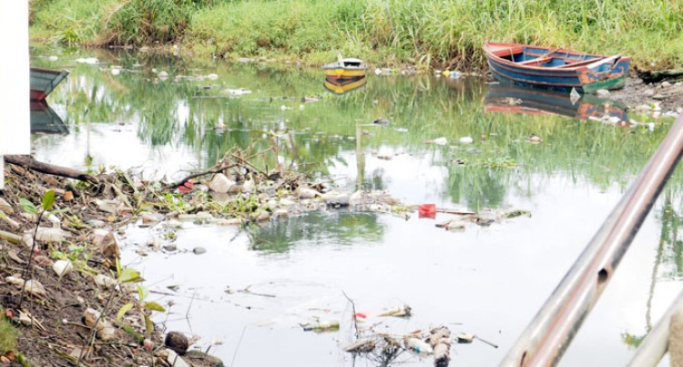 Water Pollution: Rubbish in Wailea River