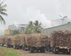 Labasa Cane Supply Hit By Dry weather