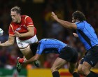 Injury Worries For Wales After Victory