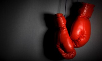 Kiwi Boxers Target Our Champs