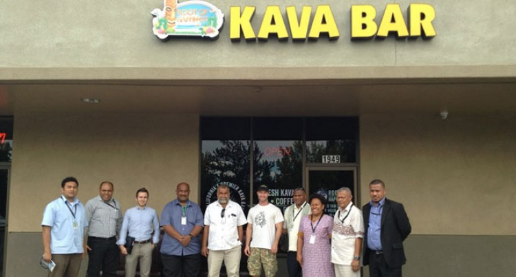 US$15 Million Kava Potential Identified