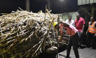 FSC Sells $3m Worth Of Electricity via Cogen Plant In Labasa