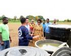 Grace Road Organic Farming Acknowledged By Kepa