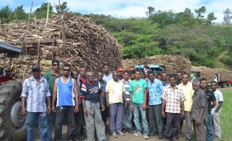 Government Working On Rest Facilities For Labasa Cane Lorry Drivers