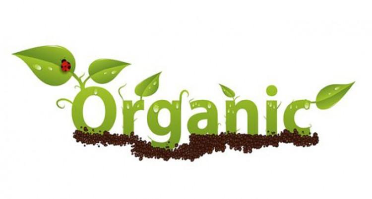 Training To Tap Into Billion-Dollar Organic Food Market