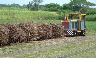 Fiji Sugar Corporation Assesses Lautoka Mill Processing Termination Date