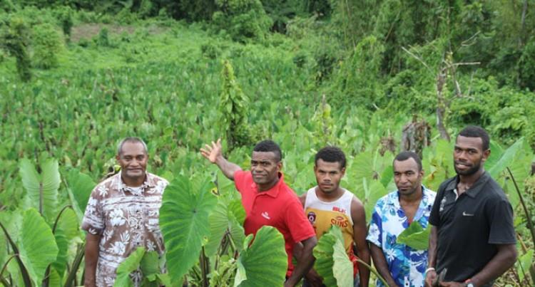 Vanuakula  Youths  Praised