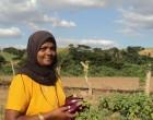 Farmer Faimun Nisha  Reflects On Success