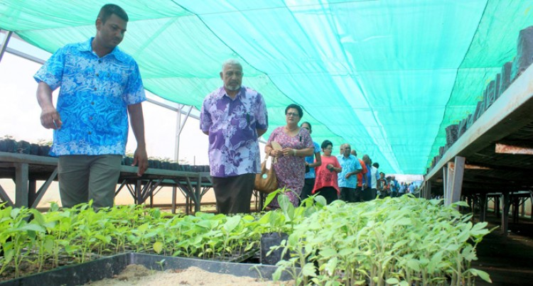 Bainimarama Praises Nath's Nursery