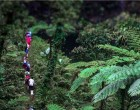 Hiking Company, Talanoa Treks, Finalist In Tourism Awards
