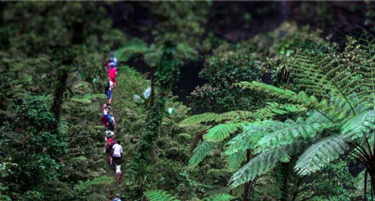 Hiking Company, Talanoa Treks, Finalist In Tourism Awards