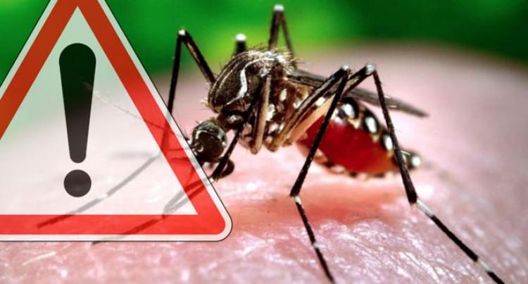 Zika Virus Alert