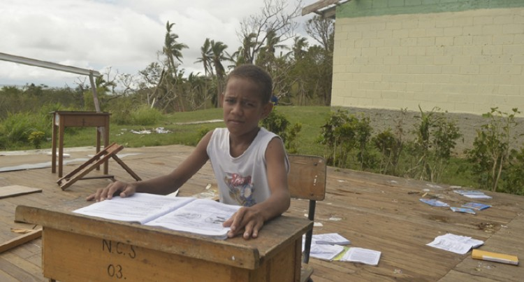 Vuaki Villagers Begin Replanting