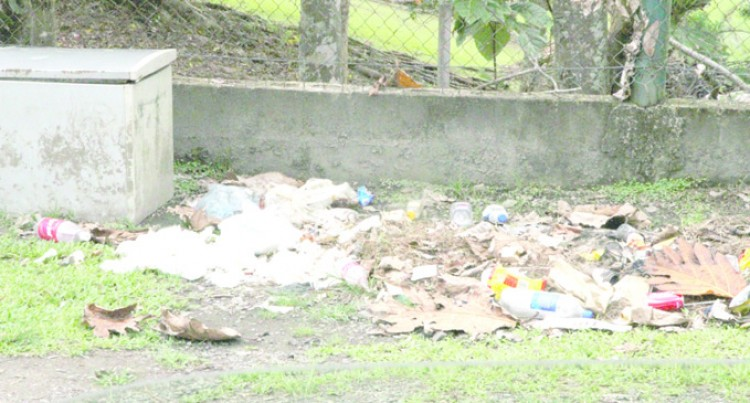Littering Must STOP Department Of Environment Warns