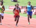 Tailevu North Star To Run For Her Dad