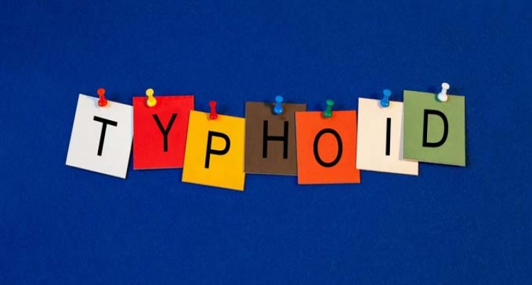 Typhoid Cases Addressed