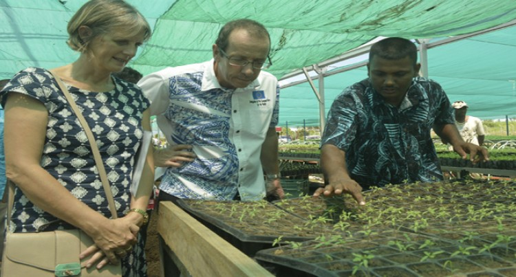 EU Assures Of More Funding For Our Sugar  Industry