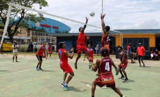 Volleyball Fever