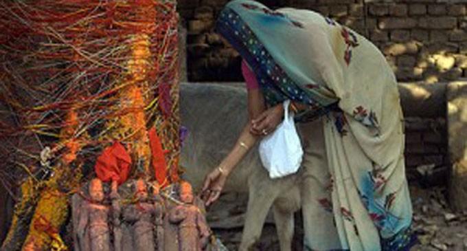 Hindus Worship The Tree Which Muslims Nurture