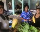 Vegetable Prices At  Savusavu Market Stabilise