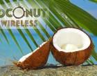 Coconut Wireless, 4th April 2016