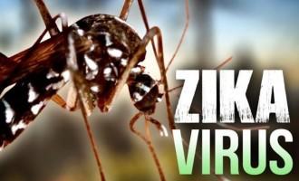 No Chikungunya, Zika In North