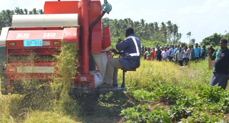 Mechanised Rice Farming For Food Security