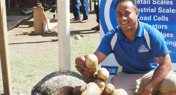 65.6 Kg Yam Wins Competition