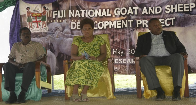 Aims To Improve Goat And Sheep Farming