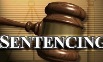 Drug Farmer Sentenced