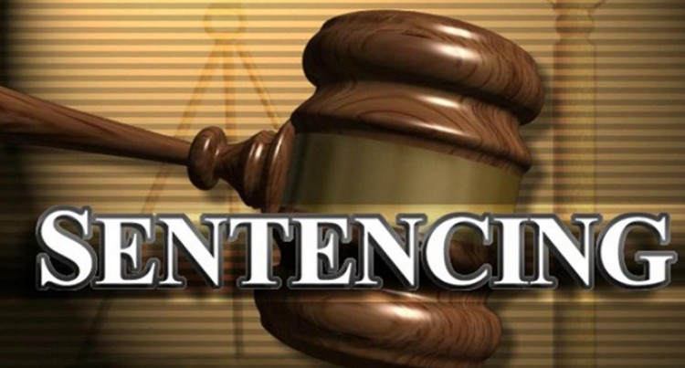 Drug Farmer Sentenced