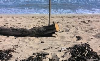 Chopped Off  Feet Found  At Natadola