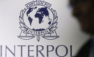 INTERPOL To Assist In Body Parts Discovery & Missing Russian Couple Case
