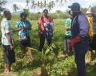Plant Health Clinic A Success For Western Farmers