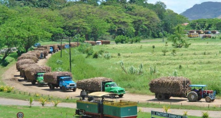 FSC Urges Farmers To Work Together