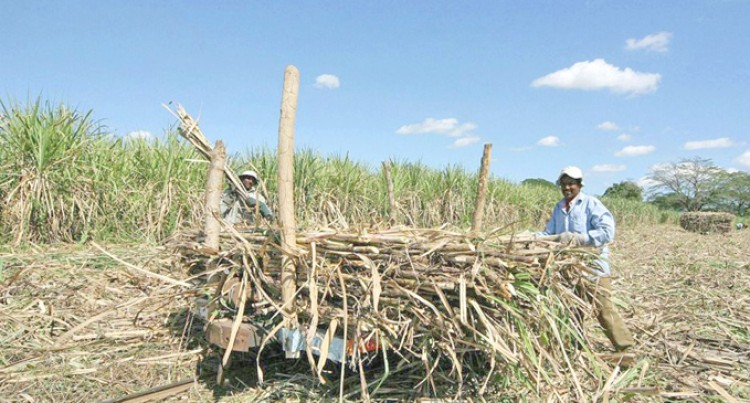 $11m For Sugar Development And Farmer Assistance