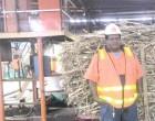 Veteran Sauleca Tips Lautoka Mill Start