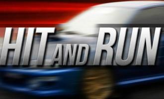 Labasa Hit-And-Run Driver Suspect