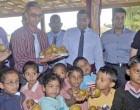 20 Tonnes Of Kiwi Fruit For West Schools