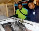 Koroilavesau: Fisheries Patrol Action Warning To Poachers
