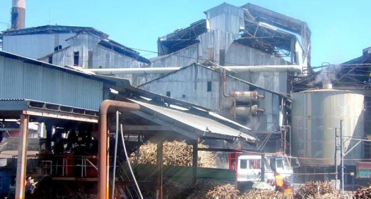 Lautoka Mill Slows Crushing