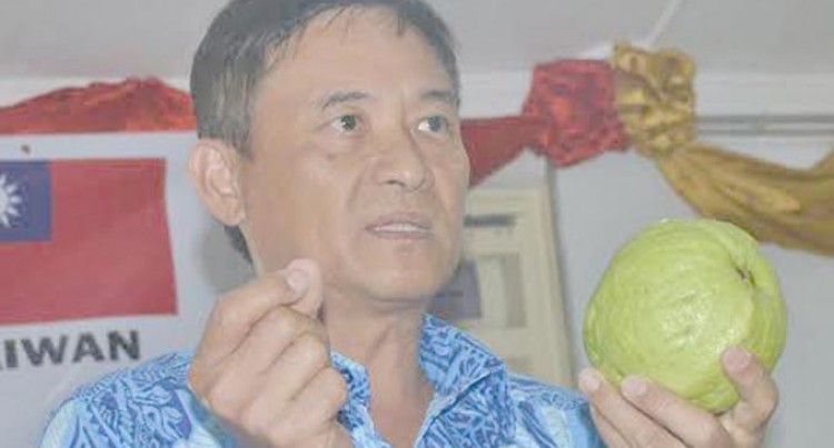 Taiwan Guava To Be Grown As Commercial Crop Here