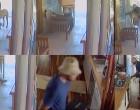 $3000 Worth CCTV Camera Records  Daylight Burglary At Lautoka Home