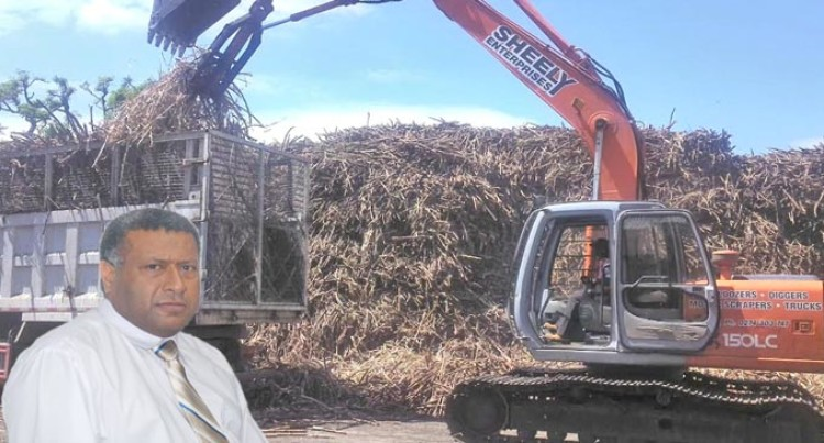 Three Mills Crush 1.3M Tonnes Of Sugarcane