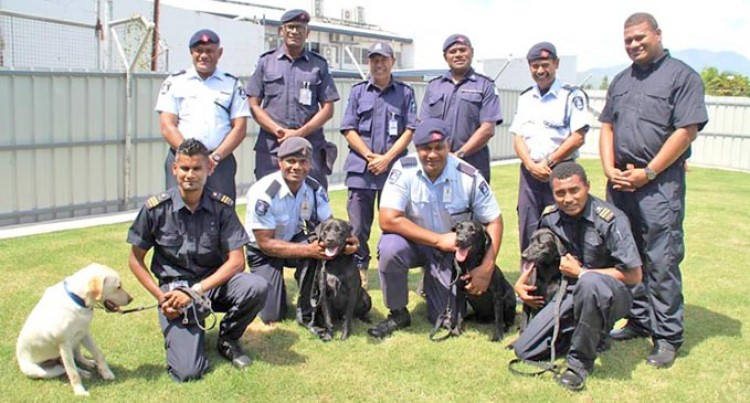 Detector Dogs Instrumental  In Catching Drug Smugglers